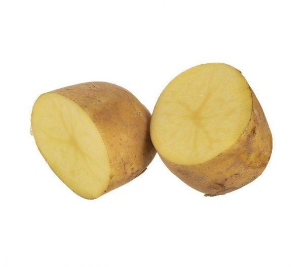 خرید اینترنتی سیب زمینی درجه یک