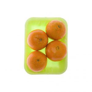 خرید اینترنتی پرتقال تامسون شمال