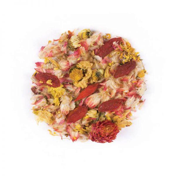 خرید اینترنتی دمنوش گیاهی مخلوط گوجی بری - شبدر قرمز - زیتون شیرین - گل داوودی